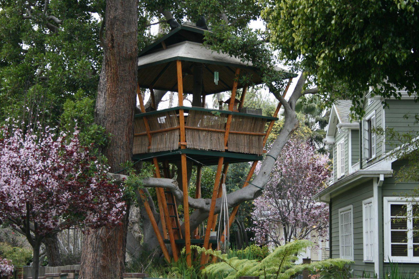 Fun Backyard Tree House Tree House Designs Cool Tree Houses Beautiful Tree Houses