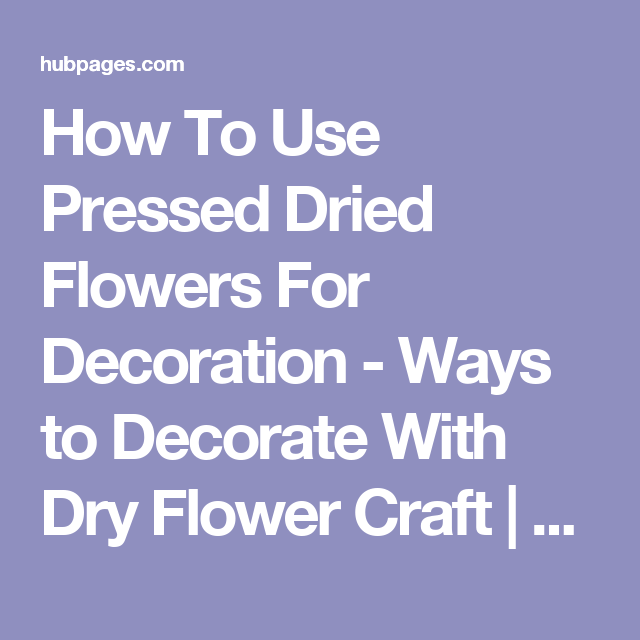 How To Use Pressed Dried Flowers For Decoration   Ways To Decorate With Dry  Flower Craft