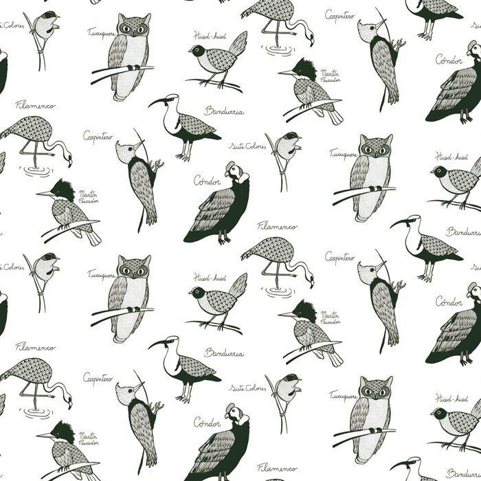 Aves de Chile   Hued hued   Chile   Pinterest   Bird