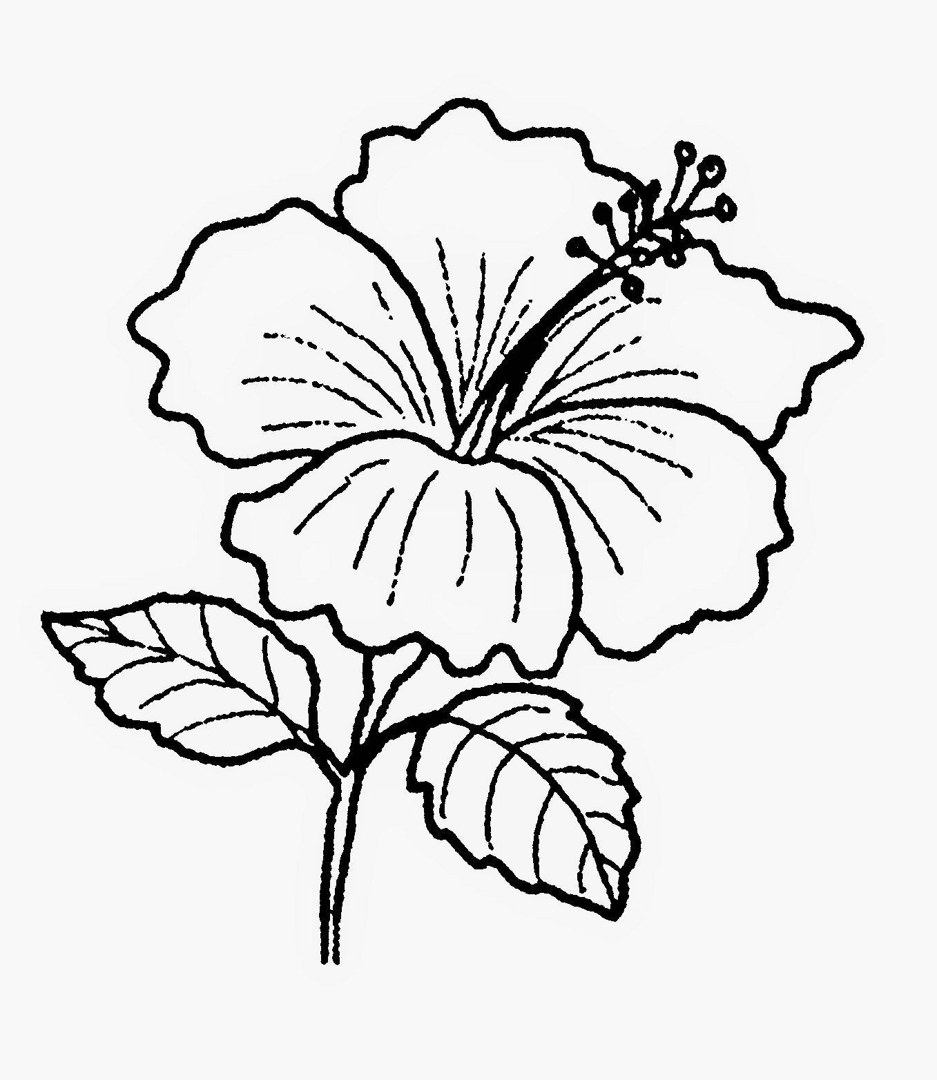 Gambar Bunga Raya Gambar Pohon Hitam Putih Clipart Best