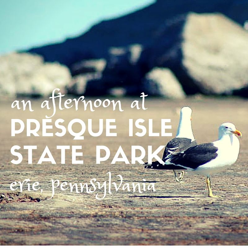 Best 25 Presque Isle State Park Ideas On Pinterest