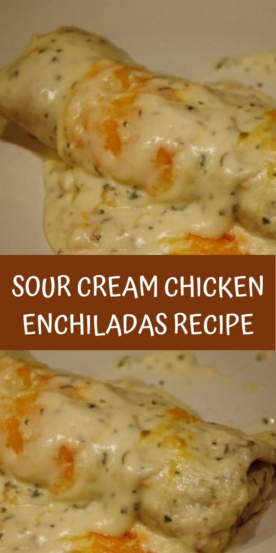 Sour Cream Chicken Enchiladas Recipe Enchilada Recipes Mexican Food Recipes Recipes