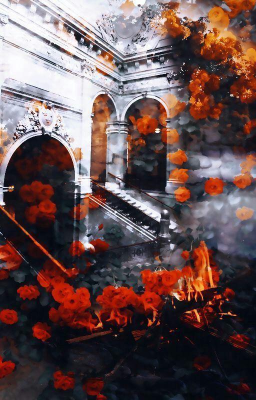 Picsart Edits Passo A Passo Celular Com Imagens Imagens