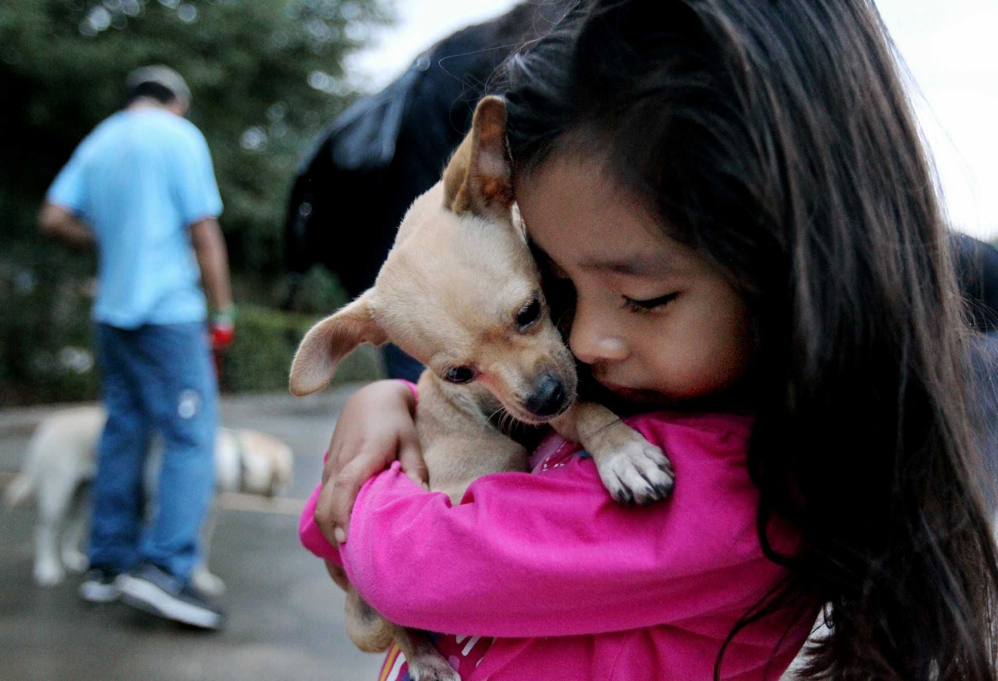 City to start lowcost spayneuter service at BARC clinic