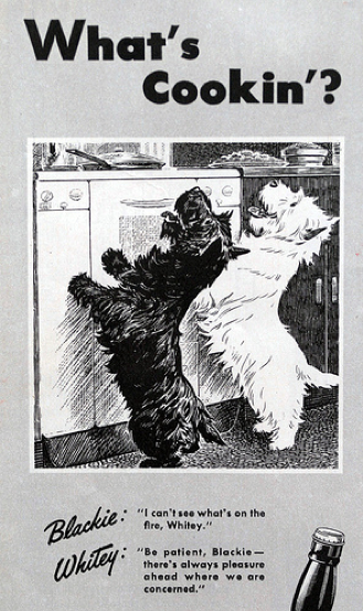 Scottish Terriers And Collections With Images Scottie Dog
