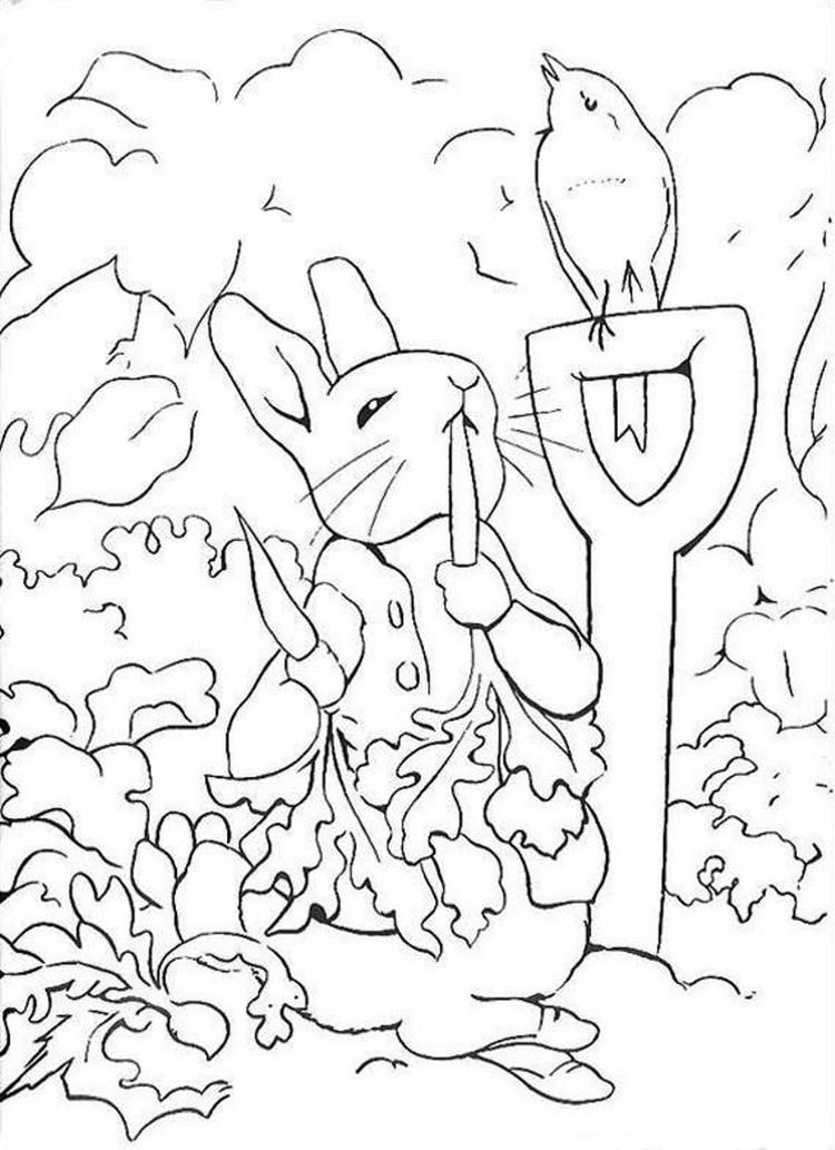 Read moreRabbit Coloring Pages In Vegetable Garden in 2019 ...
