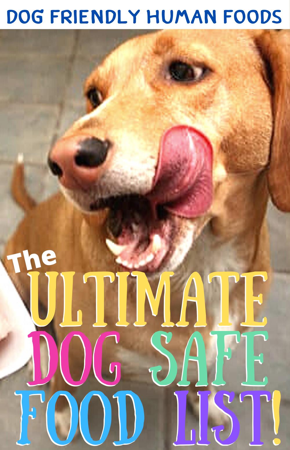 Pin on 'Dog FOOD & Dog Treats'