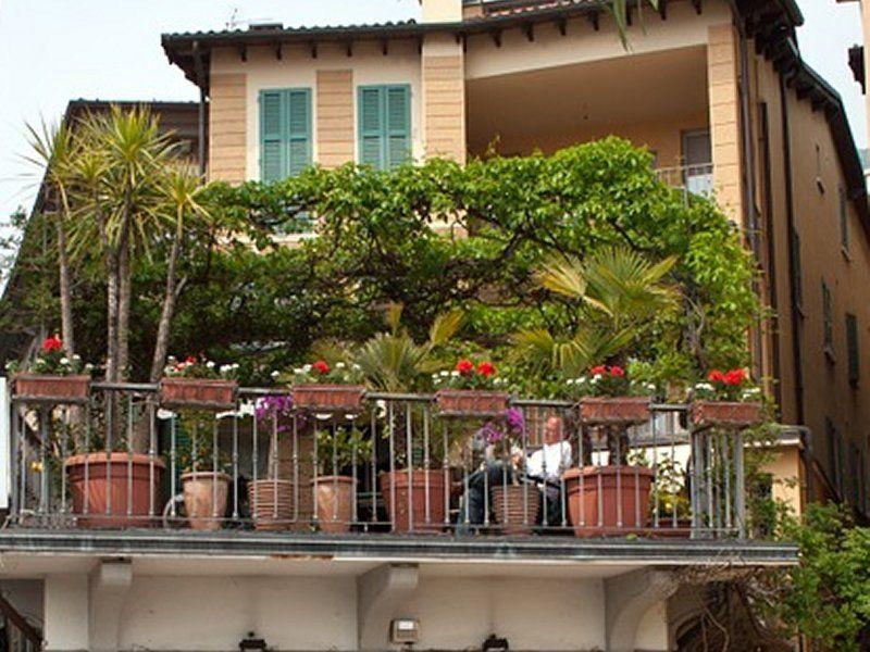 Najbolje Cvijece Za Balkon Vrtlarica In 2020 Plants