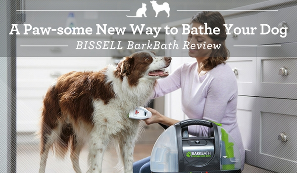 A Paw Some New Way To Bathe Your Dog Dog Bath Vacuum Dog Bissell Pet