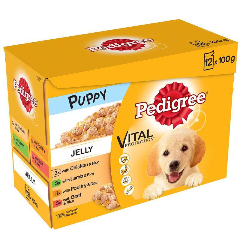 Pedigree Puppy Dog Food in Jelly 12pk Wet dog food, Dog