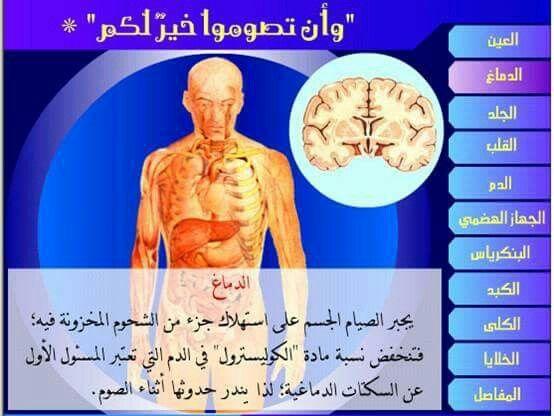 فوائد الصيام Ramadan Website Health