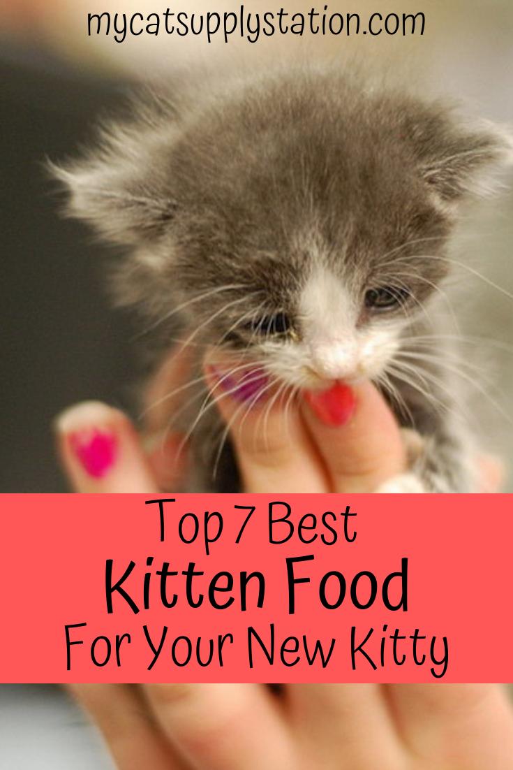 Top 7 Best Kitten Food Kitten Health Kitten Food Cat Health Care