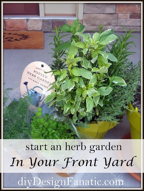How To Start Landscaping Your Front Yard : Start an herb garden in your front yard hometalk
