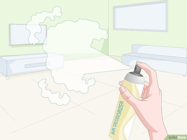 How To Get Skunk Smell Out Of The House Skunk Smell Skunk Smell In House Skunk