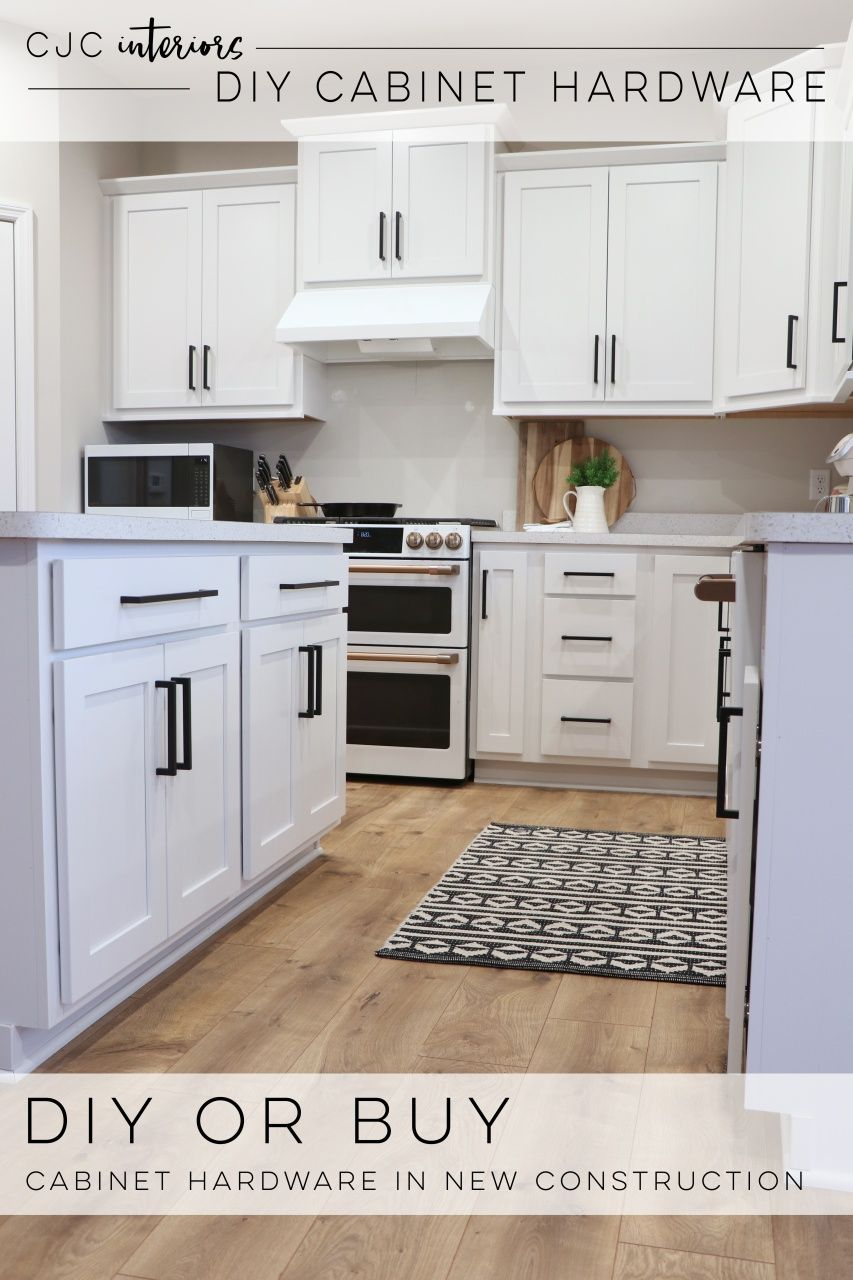 Building Your Own Kitchen Cabinets in 2020   Modern ...
