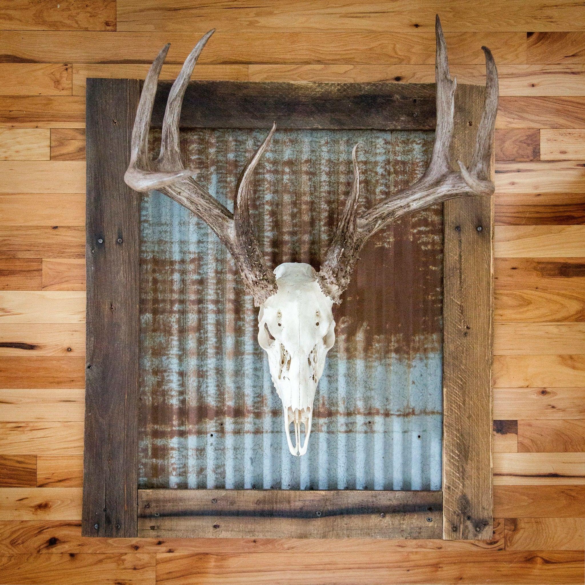 Rustic Tin Skull European Mount Plaque Etsy Deer Antler Decor Antlers Decor Deer Decor