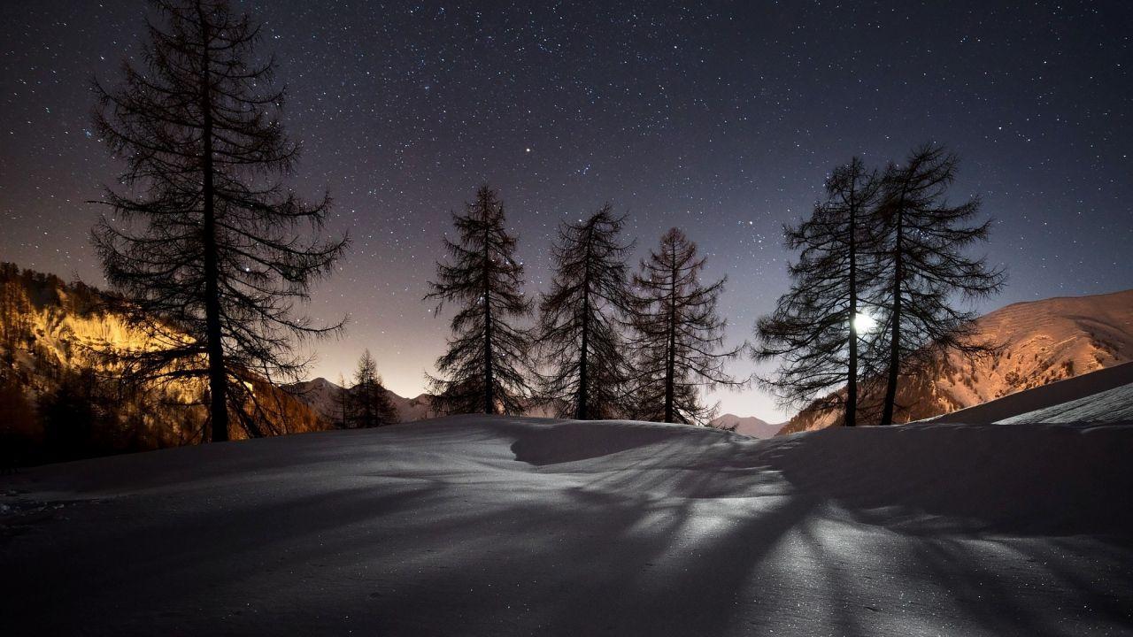 1280x720 Wallpaper Winter Trees Snow Night Landscape En