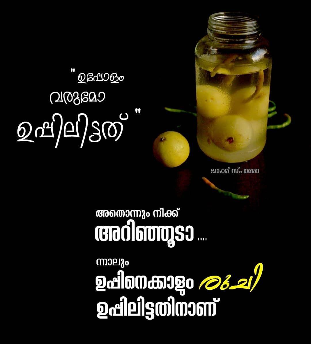 Athonum Enikariyila But Uppu Mangakannu Taste Kooduthal Food Quotes Funny Food Captions Food Quotes