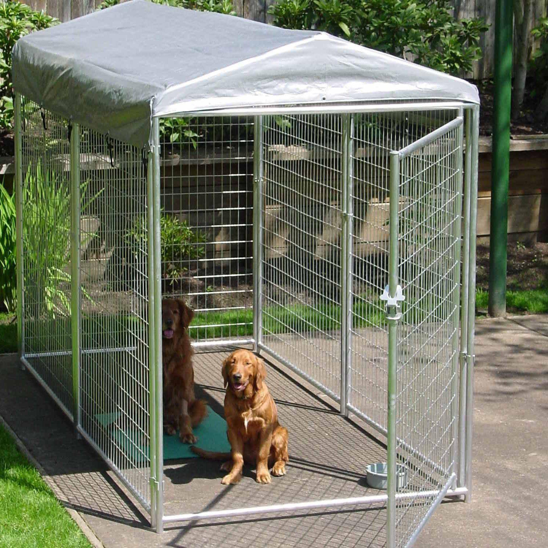 Dem Hund Freiheit schenken: Hundezwinger selber bauen ...