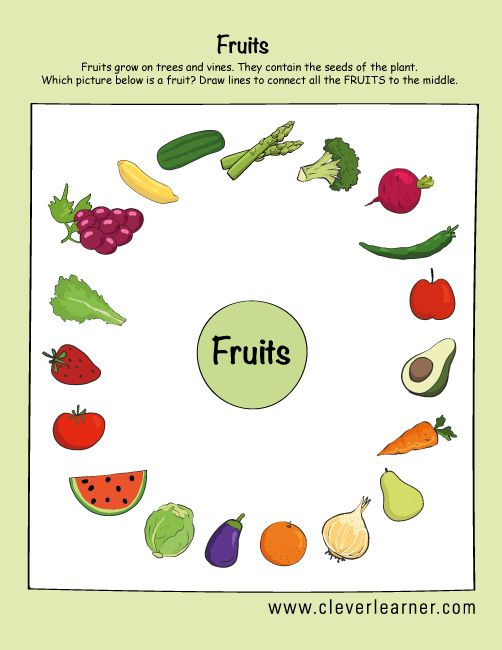 Fruit Or Veggie?? What Is The Difference Anyway? Here Is It:  Http://cleverlearner.com/science/fruit… Preschool Worksheets, Fruit  Crafts, Preschool Activity Sheets