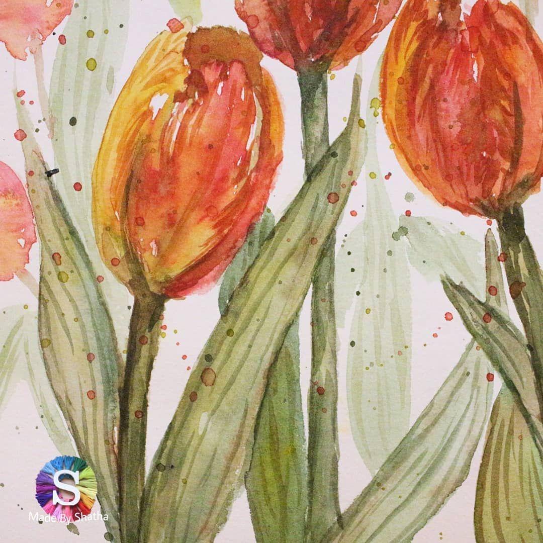 رسمة سريعة خطافية مثل كل رسماتي لزهور الزنابق أو التوليب الفاتنة هذا النوع يسمى زنابق الببغاء لانه متدرج الألوان و Painting Art Instagram