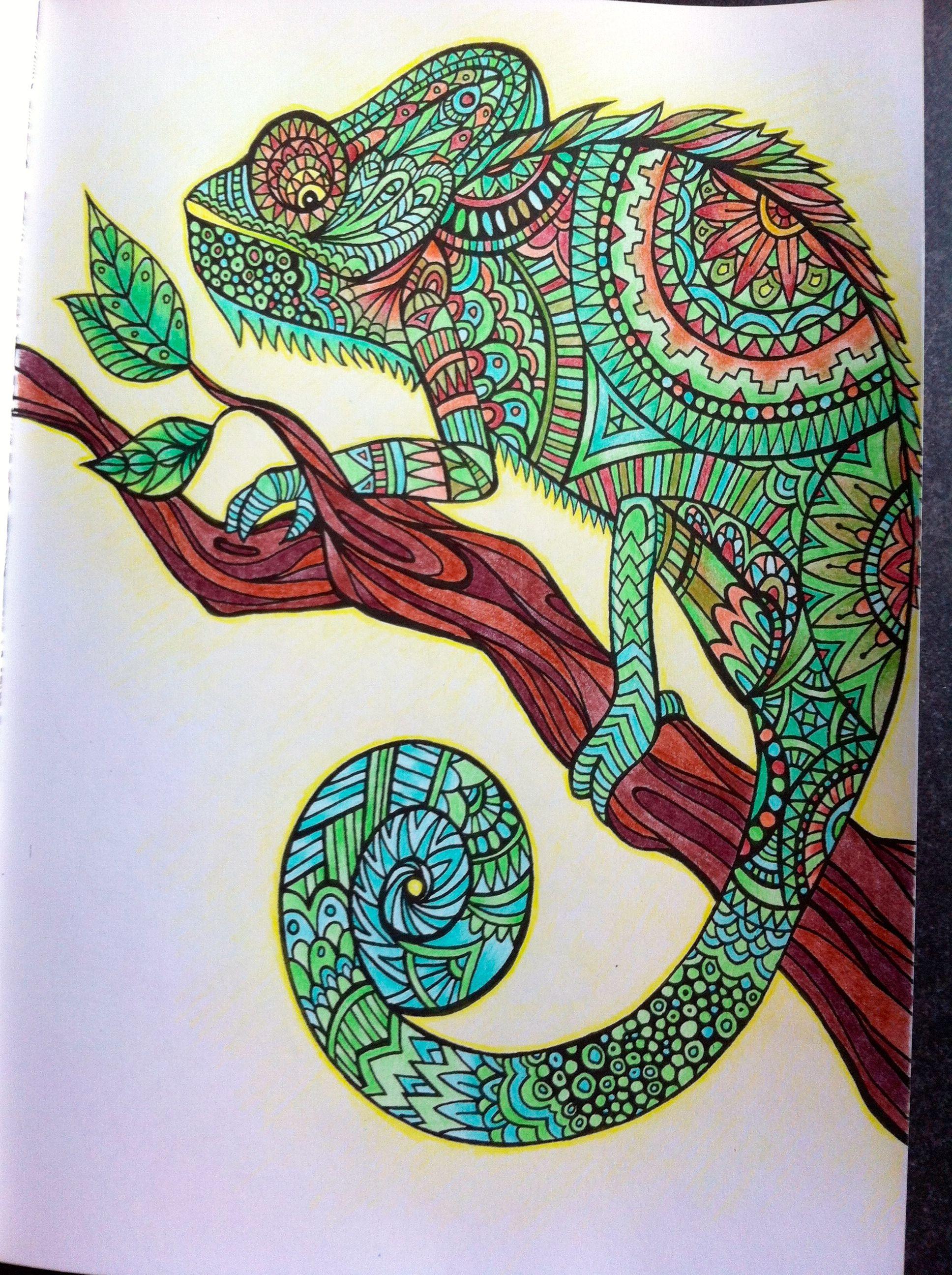 """Livre """"Bestiaire extraordinaire"""" Crayons de couleurs divers Anti StressAdult"""
