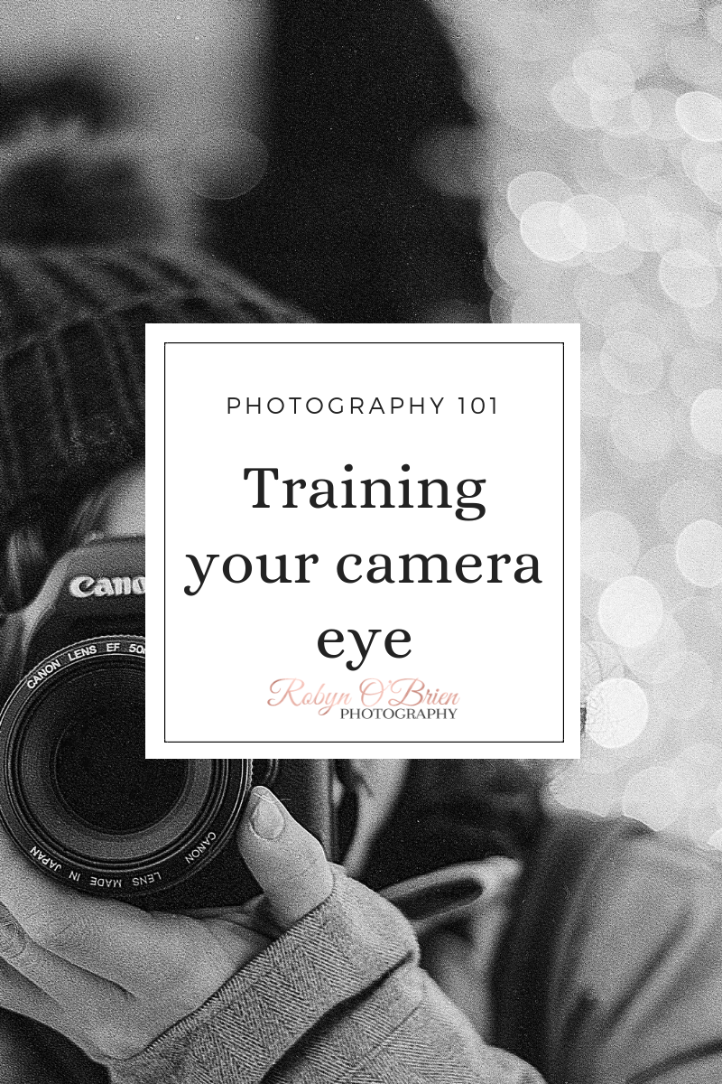 Training your camera eye is all about learning the basics of photography – a photographic eye is a way of looking at something to see the best way to photograph it.  It makes the difference between a nice photo and an amazing one.  Learn this basic photography skill and more in my new Learn Photography 101 post – click to read more! #photography101 #learnphotography #photographiceye