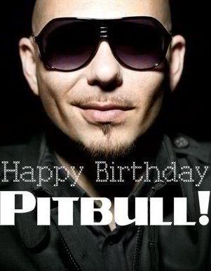 Pin On Pitbull