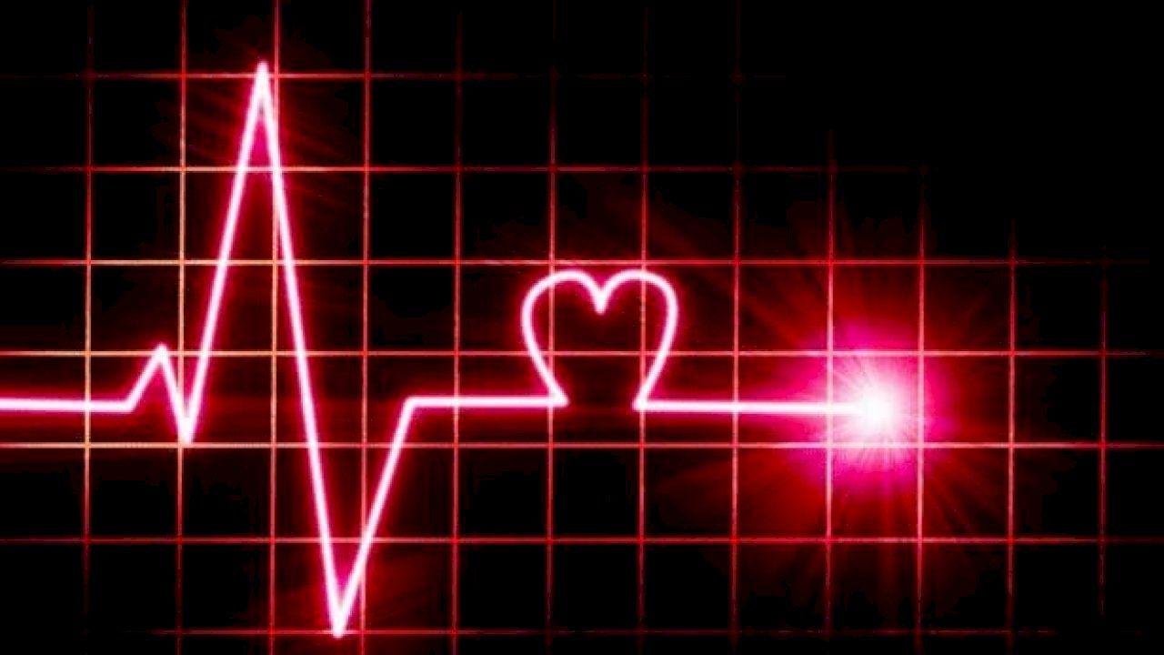 سرعة دقات القلب Fast Heart Rate Heart Neon Signs