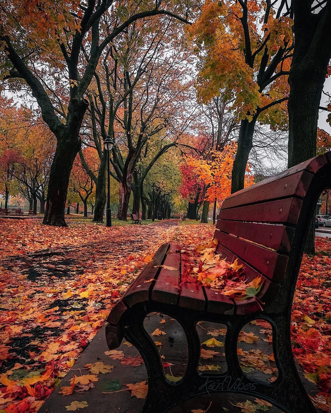Day Of Autumn Autumn Scenery Autumn Nature Fall Pictures