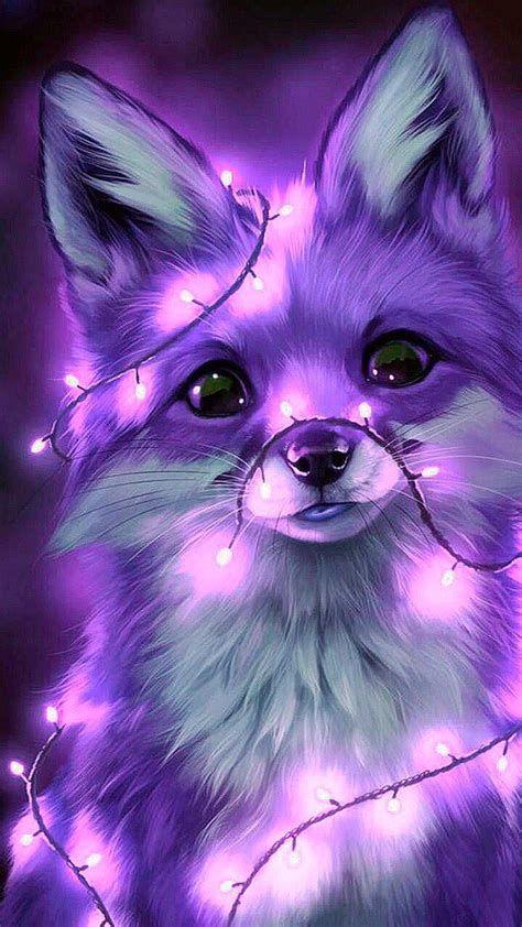 Beautiful Fox | Fondo De Pantalla De Aves, Fondos De