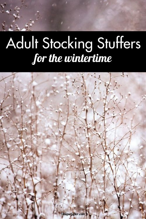 adult stocking stuffer ideas for the wintertime mmm curling up with apple cider