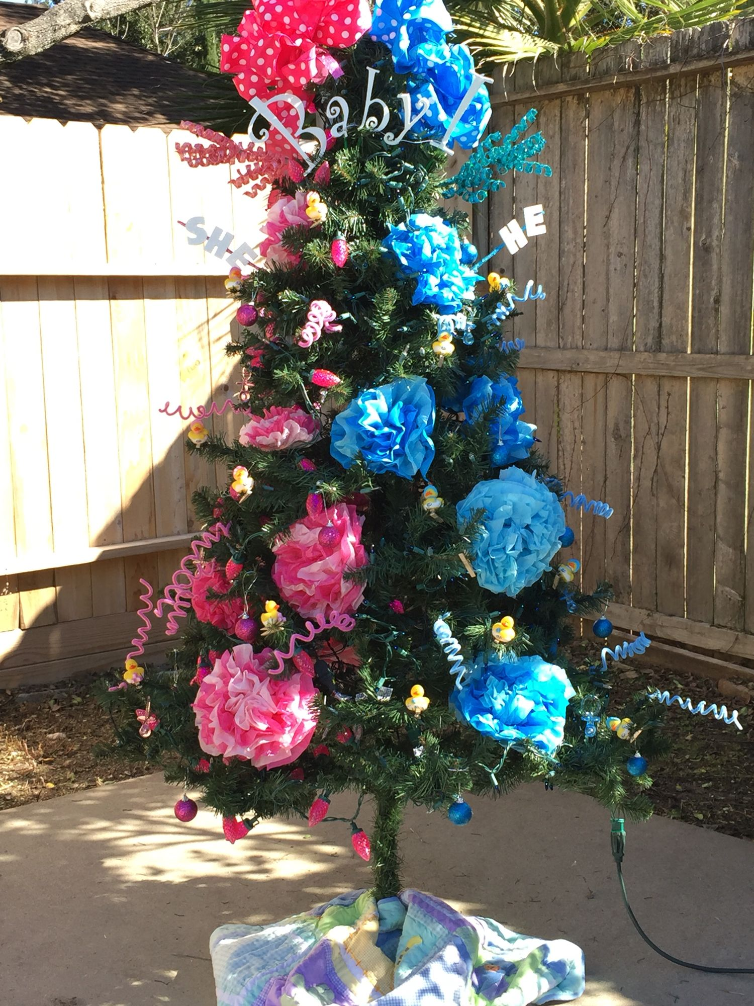 Christmas Gender Reveal Ideas.Baby Gender Reveal Christmas Ideas Year Of Clean Water