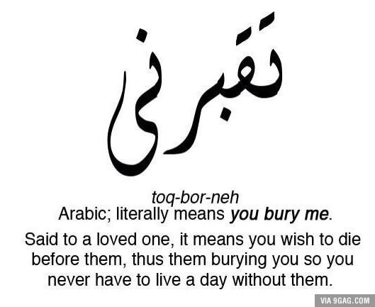 Love in arabic google search t pinterest frases for Farcical german translation
