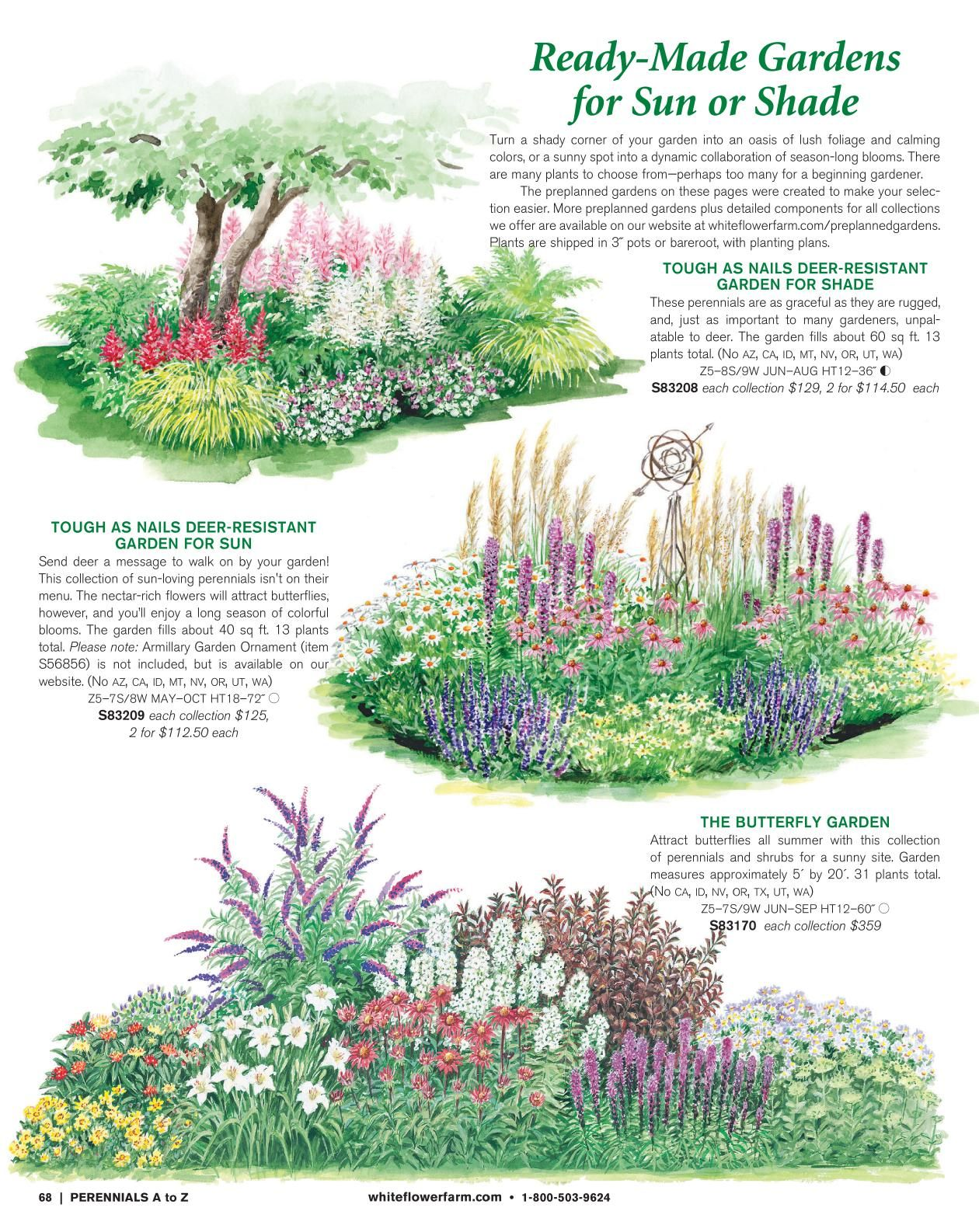 White Flower Farm Catalogs Vegetable Garden Design Shade Garden Home Garden Plants