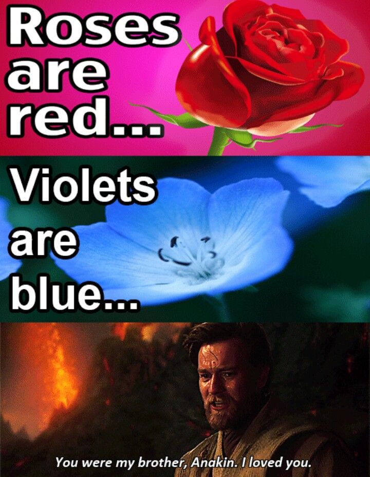Roses Are Red Starwars Obiwan Valentine Star Wars Valentines Star Wars Humor Funny Star Wars Memes