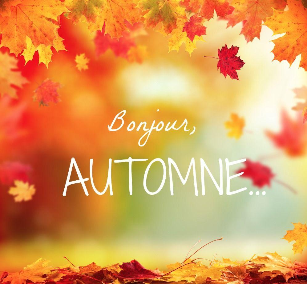 Image result for bonjour l'ete