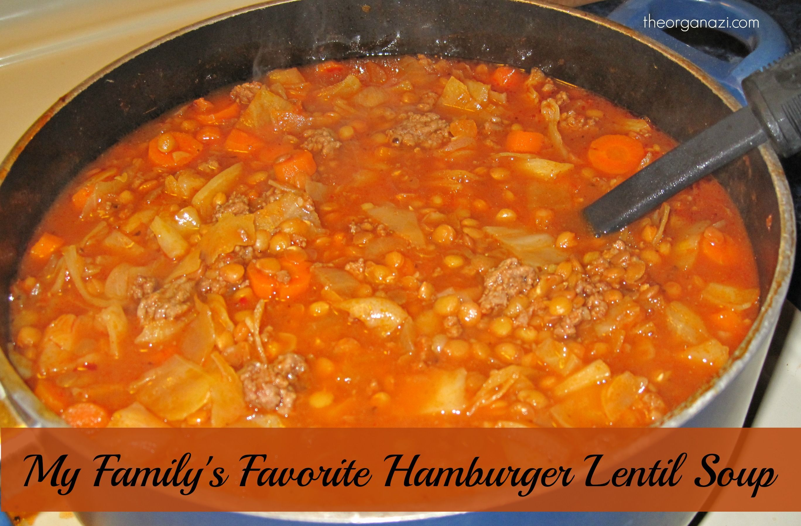 Family Favorite Hamburger Lentil Soup