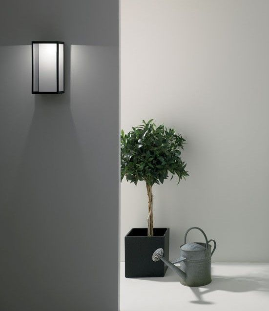 LED Black Exterior Wall Light