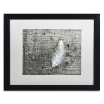 Trademark Art Feather on Rough Wood by Cora Niele Framed Photographic Print Size: 1