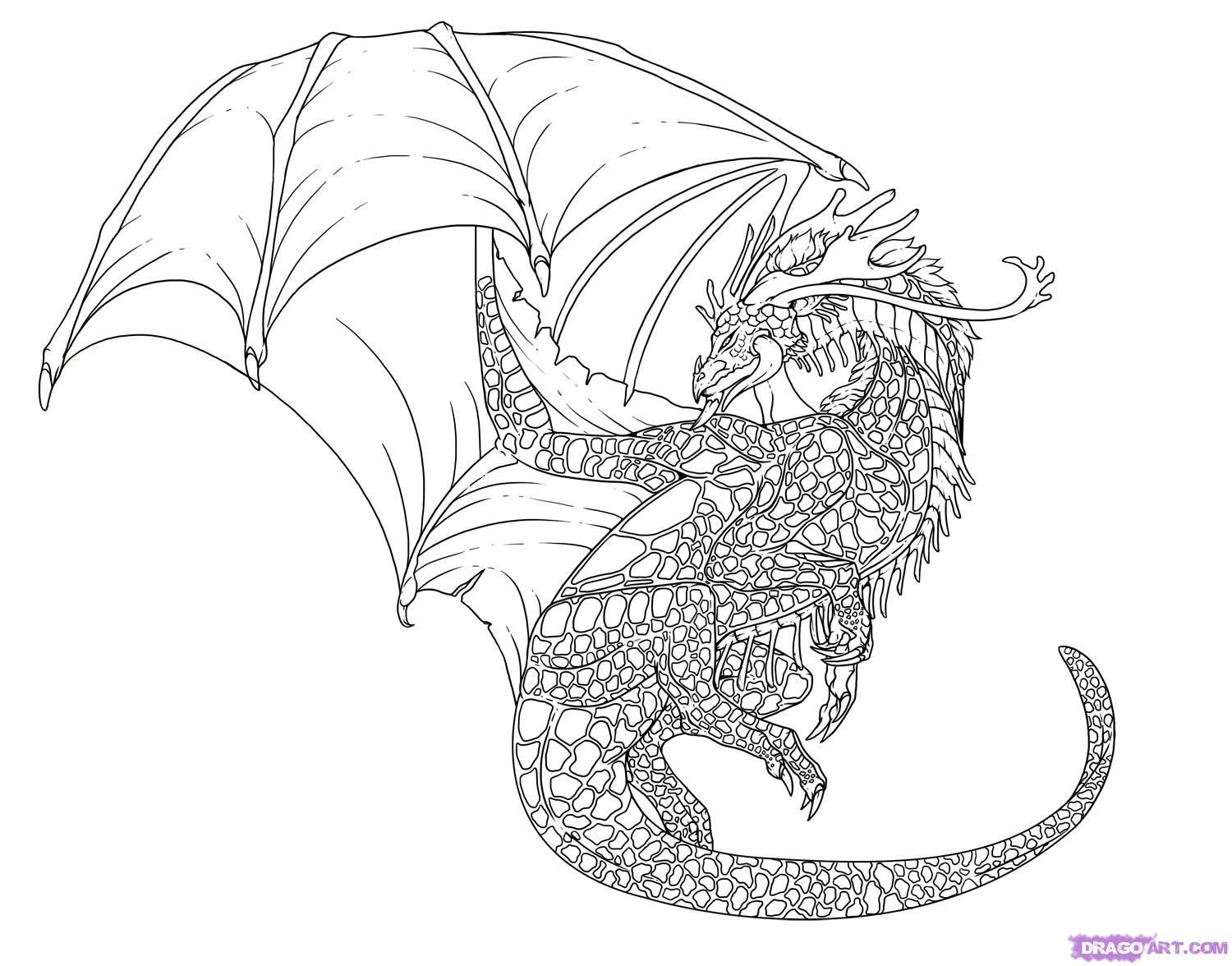 Cool Drawings - Bing images | Cool dragon drawings, Dragon ...