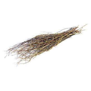 Natural Hog Huck Branches Branch Decor Dried Flowers Art Craft Store