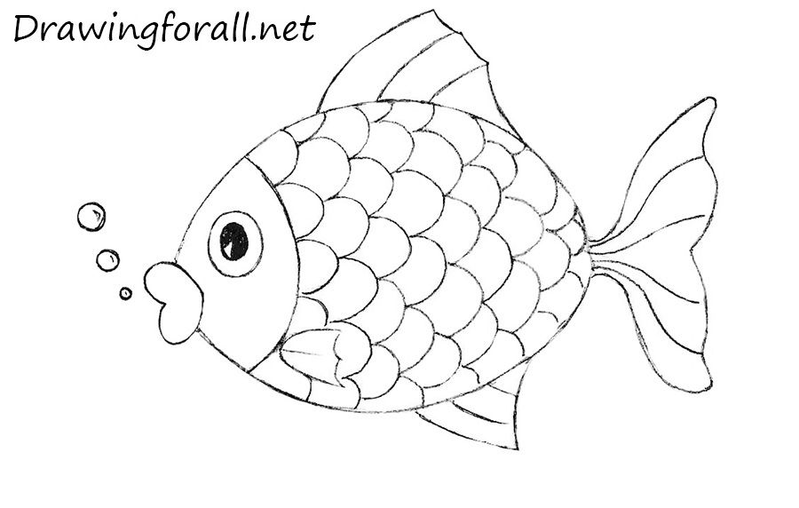 How To Draw A Fish For Kids Drawn Fish Fish Drawings Easy Fish Drawing