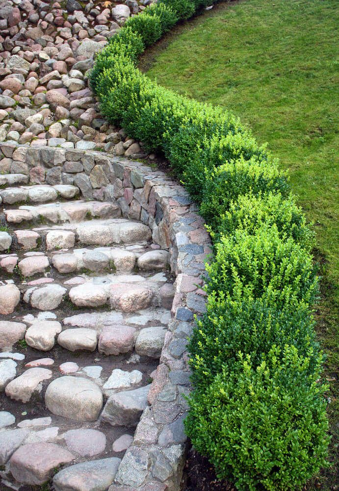 Short Enough To Step Over High Enough To Be A Stretch Check Out These Radically Different Hedge Styles And Beautiful Gardens Garden Design Outdoor Gardens