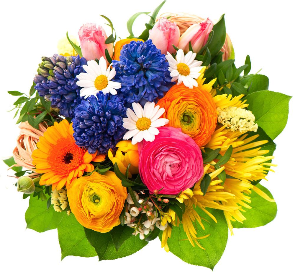 Best value birthday arragement eiffelflower floral