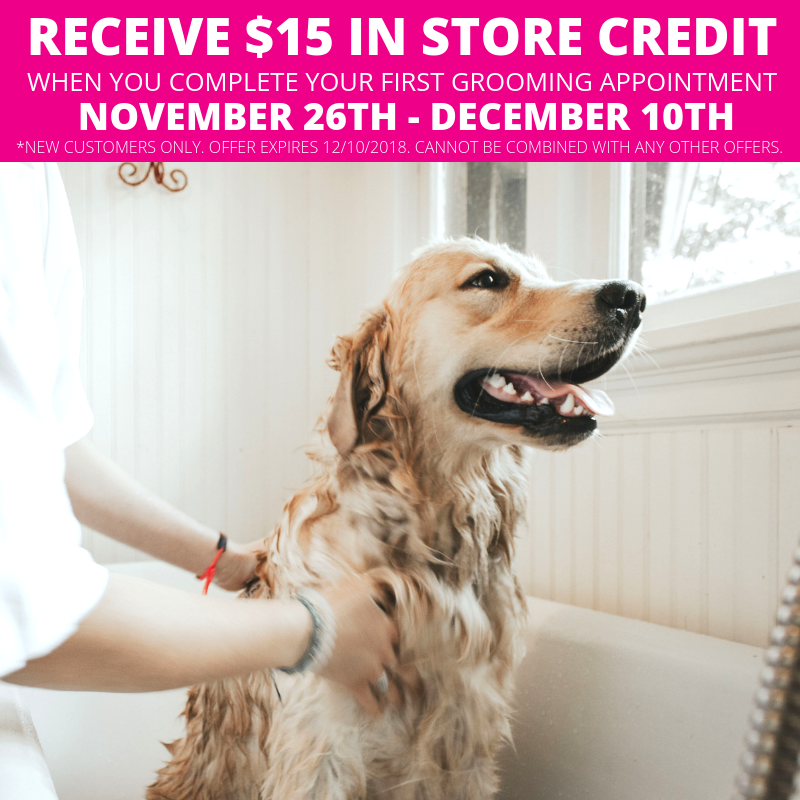 Now Through December 10th Receive 15 In Store Credit With The