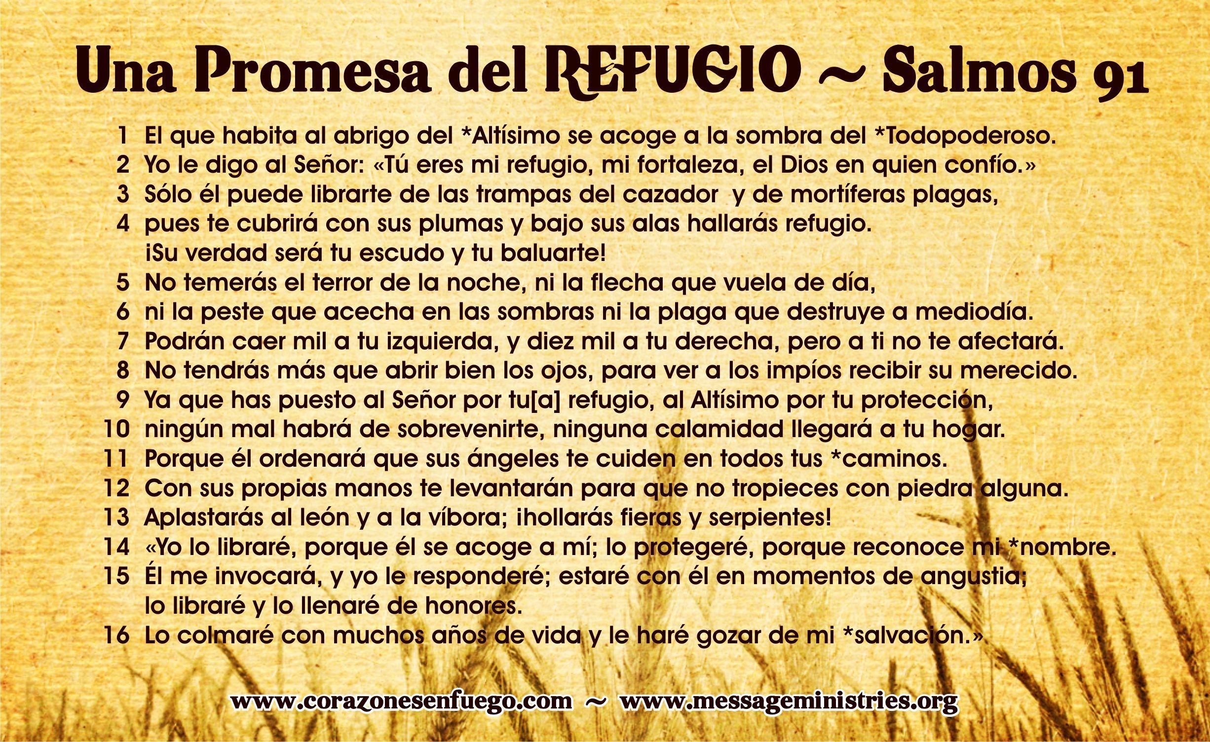 4unico: :: FRASES DE COMUNION Y DE CONFIRMACION