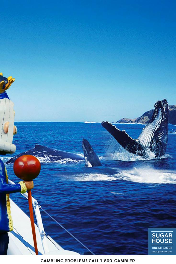 Whale Casino