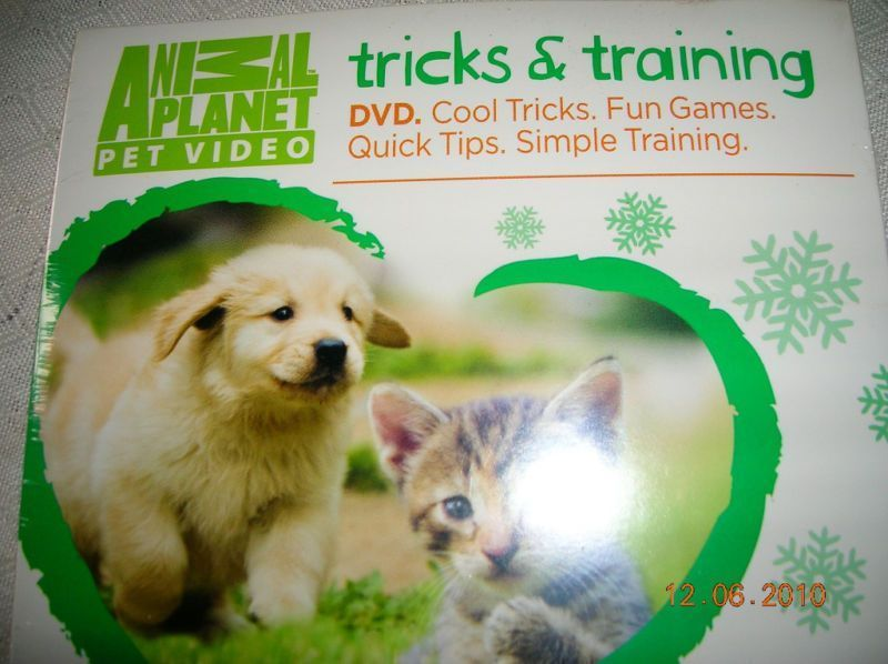 2 99 Dog Training Dvd Tricks And Tips To Train Animalplanet
