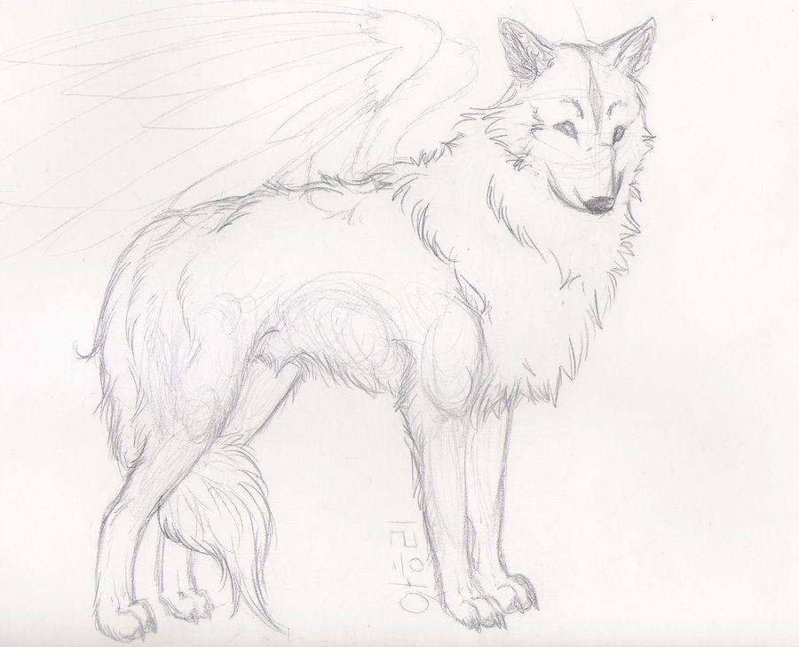 Easy Wolf Sketches | Wolf Sketch by StarlietWolf on DeviantArt ...